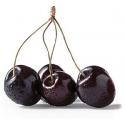 Black Cherry - [Xi'an Taima]