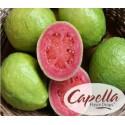 Sweet Guava (Сладкая Гуава) - [Capella]